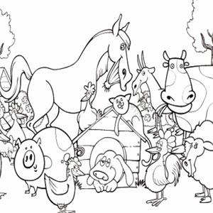 boerderij dieren kleurplaat pdf boerderij dieren kleurplaat te ...: www.docentenplein.nl/kleurplaten/boerderij-dieren