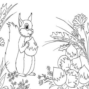 Eekhoorn kleurplaat