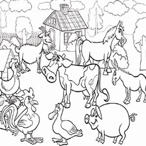 boerderij dieren kleurplaat