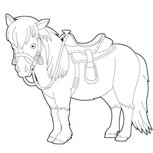 Volwassen Kleurplaat Ingekleurd Paard Met Zadel Kleurplaat