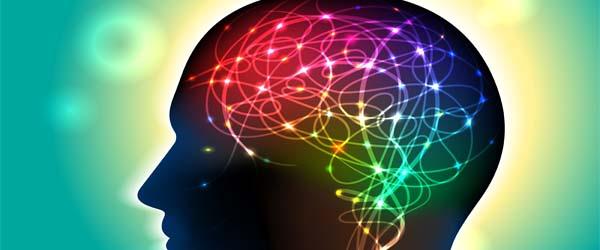 Psychologie gaat samenwerken met Pabo University Fontys