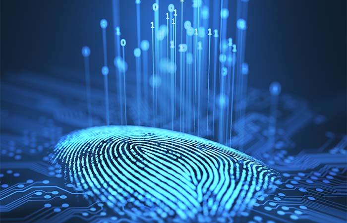 Wereldrecord hologrammen bouwen van start