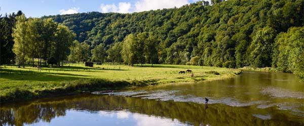 Vijf locaties in de Ardennen met de mooiste vakantiehuizen