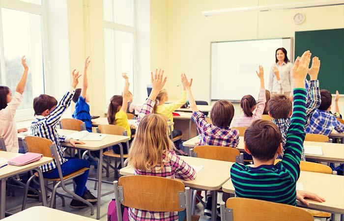 Gratis gastles Zeebenen in de klas